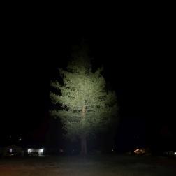BLF Q8 Flashlight Review CivilGear 020